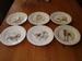 Platte borden Honden Sologne